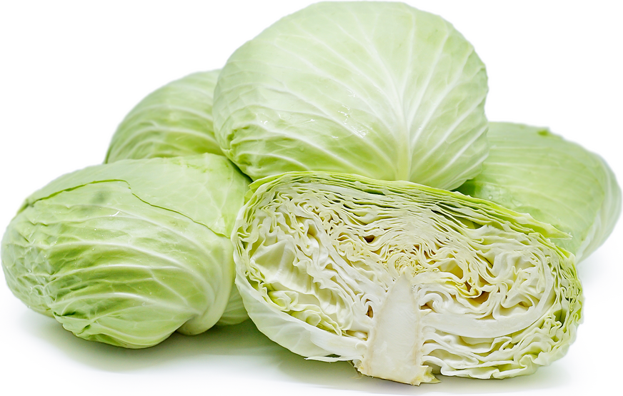 Taiwanese Flat Cabbage picture