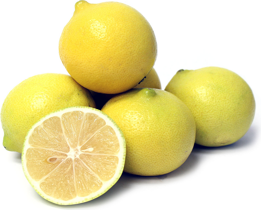 Persian Sweet Lemons picture