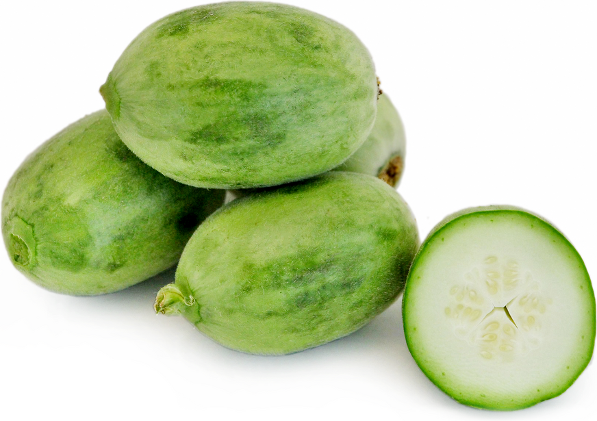 Tekka Melon picture