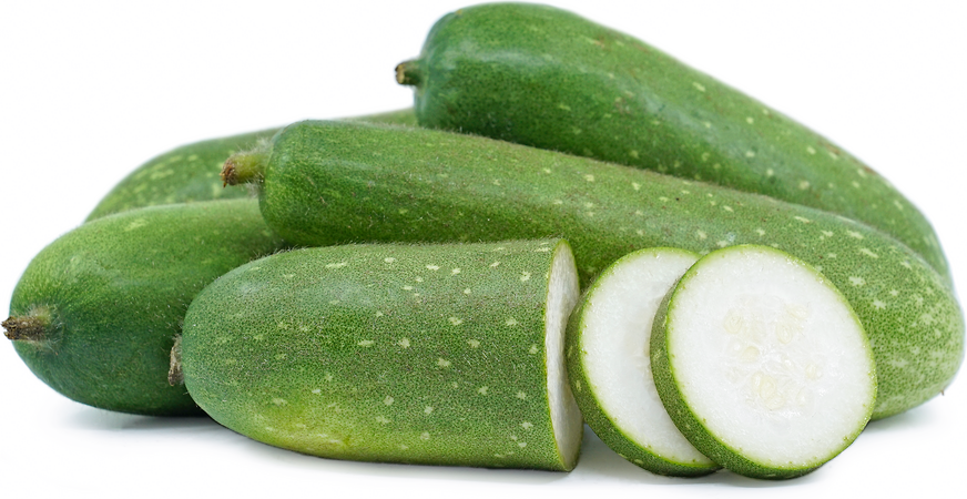 Bottle Gourd picture