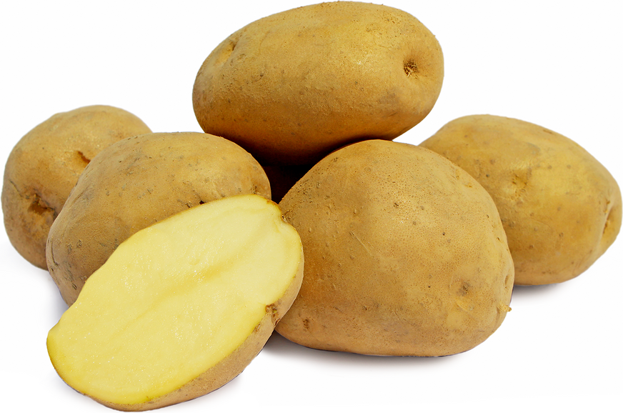 Kufri Pukhraj Potatoes picture