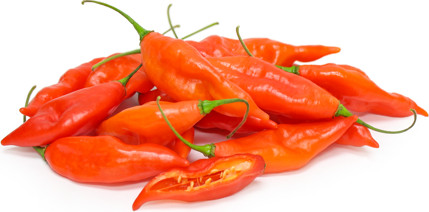Hot Paper Lantern Chile Peppers picture