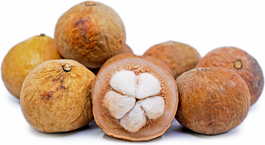 Santol Fruit picture