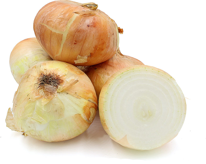 Yellow Onions picture