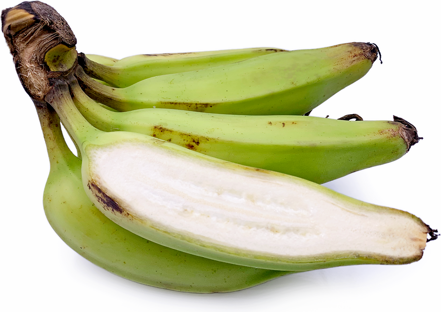 Raw Bananas Information and Facts