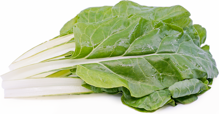 Argentata Swiss Chard picture