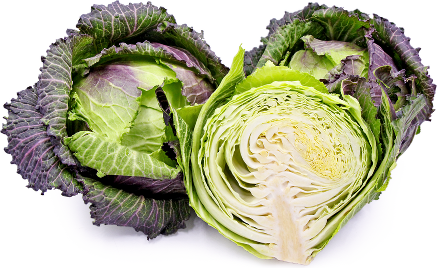 Red Savoy Deadon Cabbage Information And Facts
