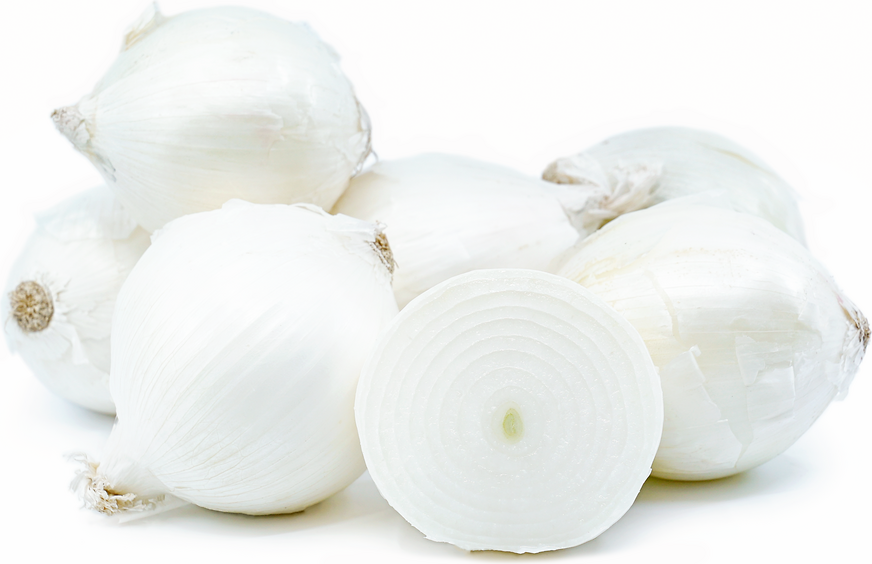 White Onions picture