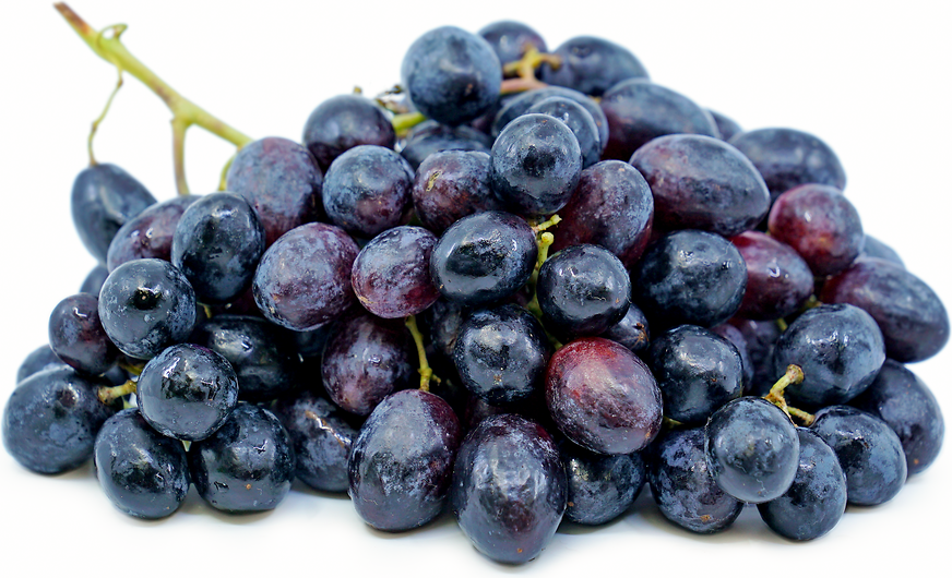 Black Seedless Grapes picture