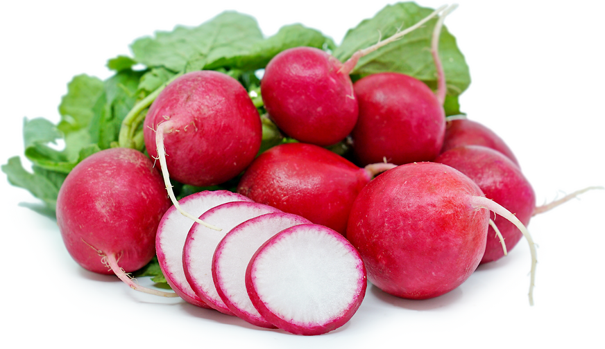 Red Radish picture