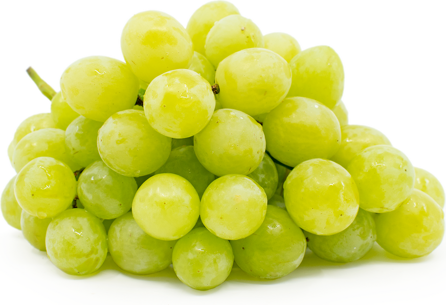 Valley Pearl Grapes picture
