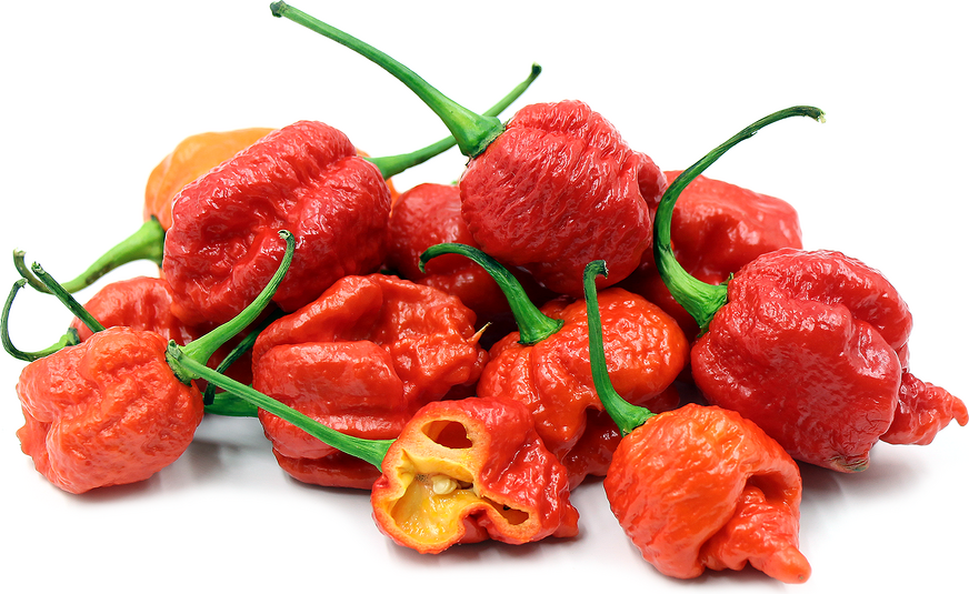 Carolina Reaper Chile Peppers picture