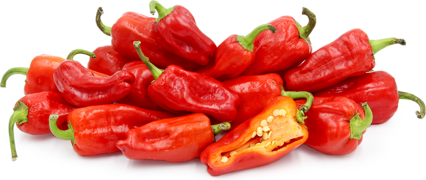 Aleppo Chile Peppers picture