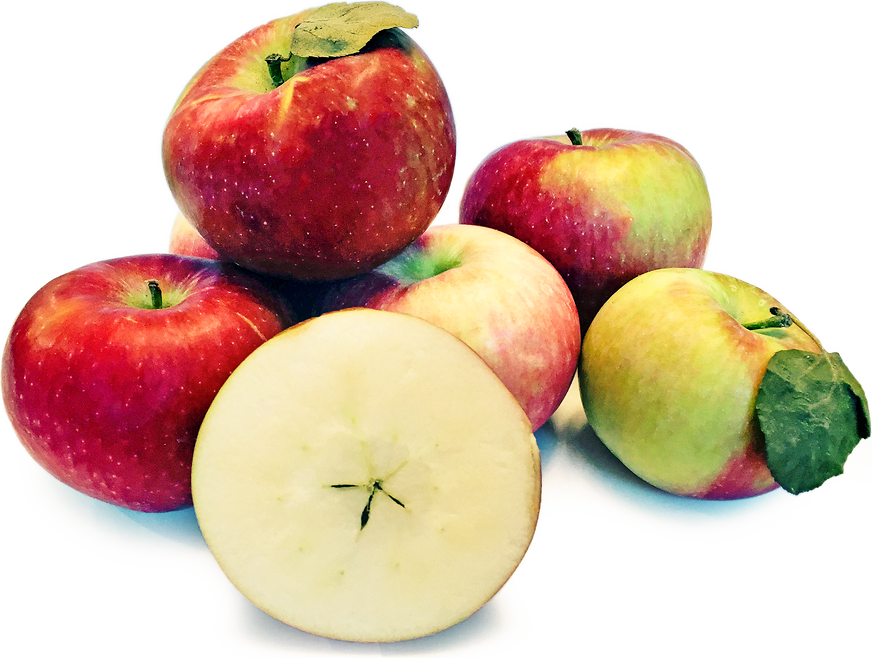 Paula Red Apples Information And Facts