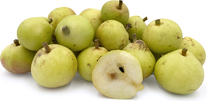 Bambinella Pears picture