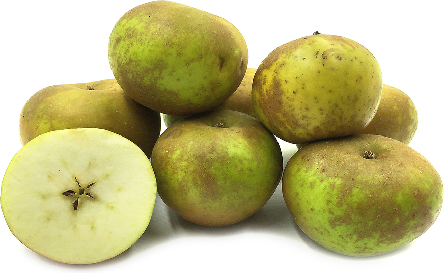 Russet Apples picture