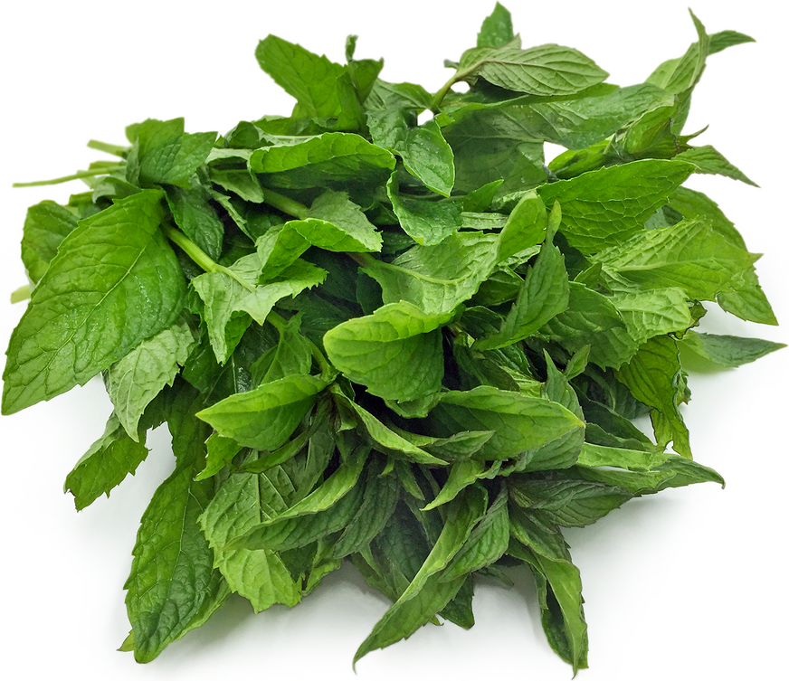 Wild Mint picture