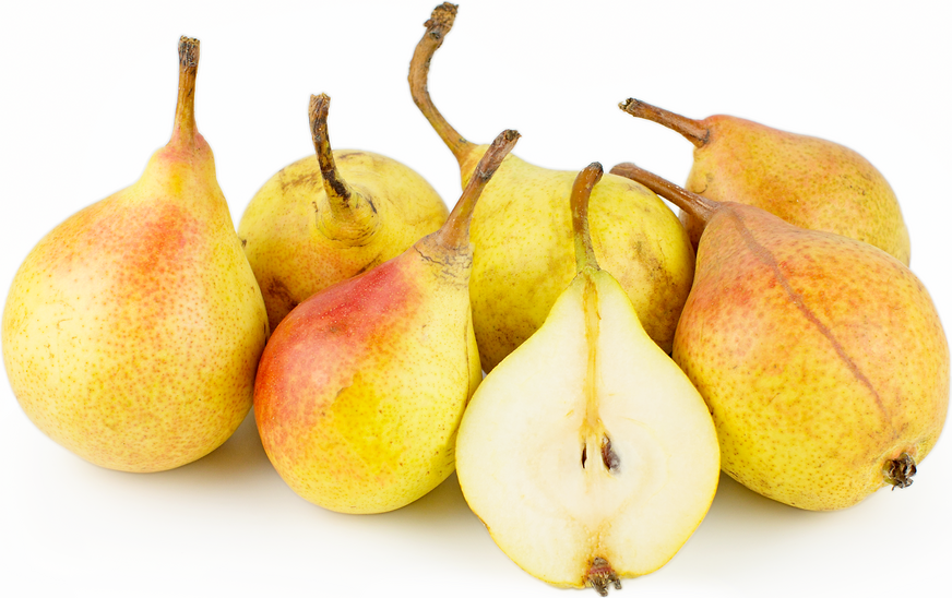 Clapp's Favorite Pears picture