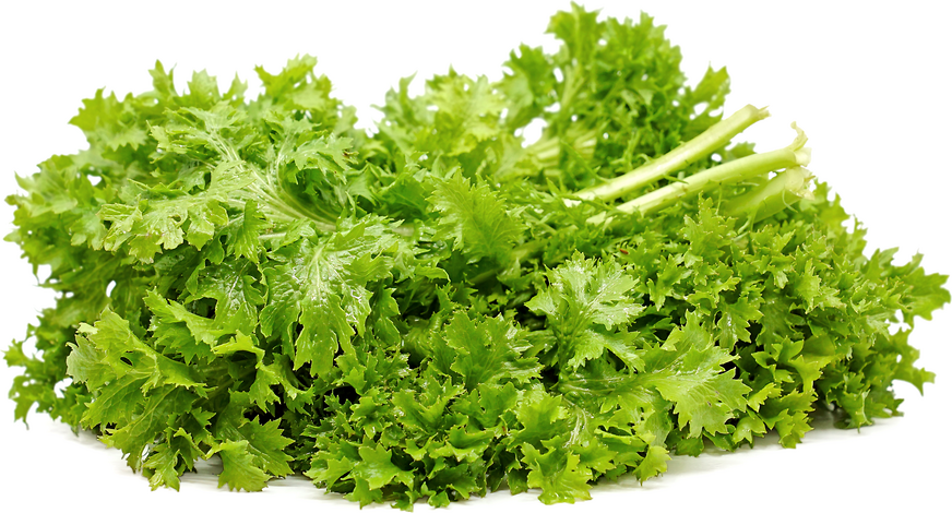 Wasabi Mustard Greens picture