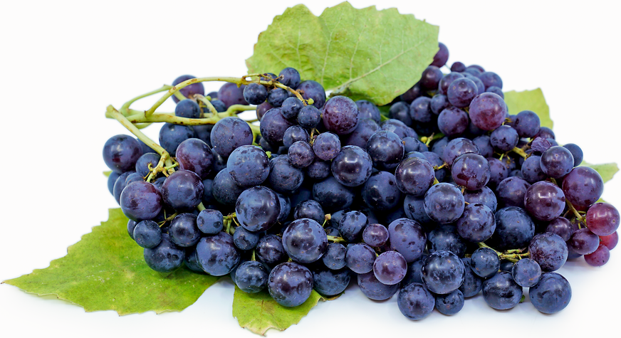 Blueberry Grapes picture