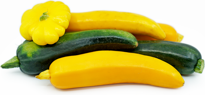 Mixed Summer Squash picture