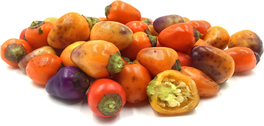Chinese Five Color Chile Peppers picture