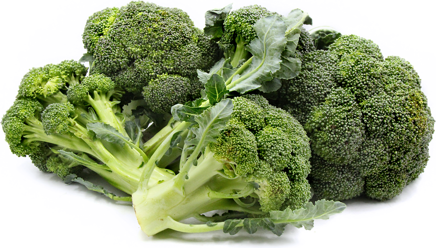Calabrese Broccoli picture