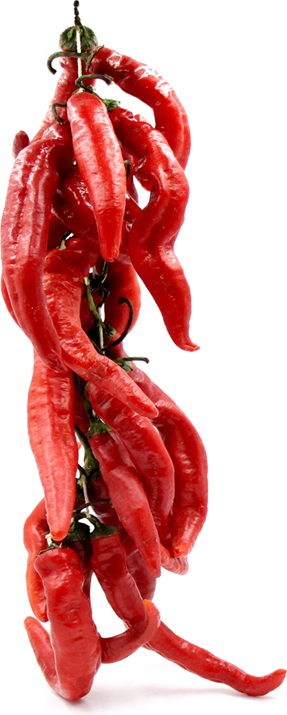 Cayenne Chile Pepper String picture