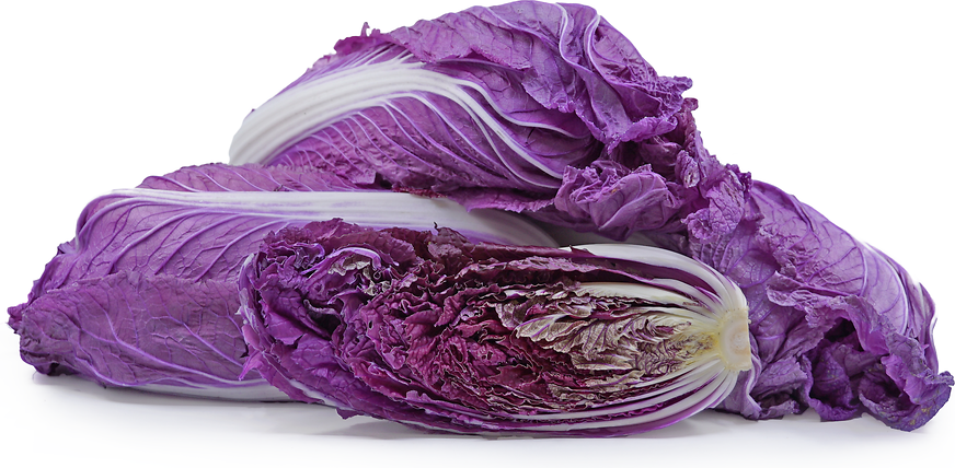 Red Napa Cabbage Information And Facts