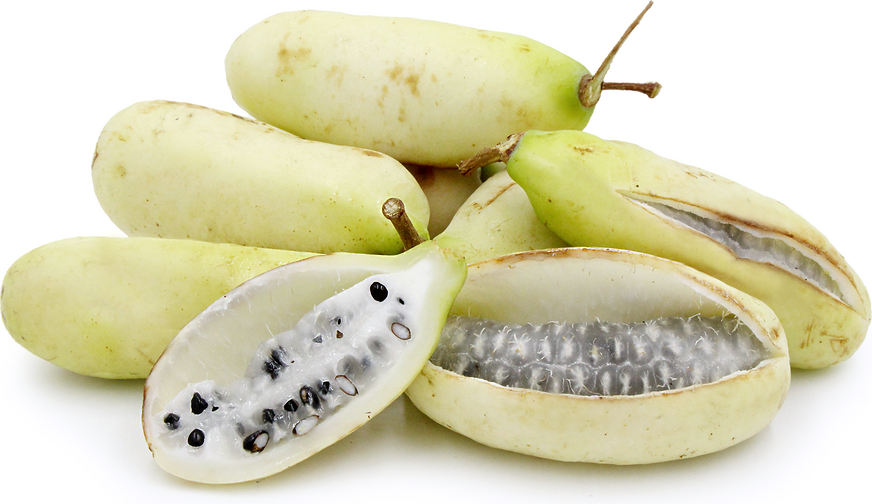 White Akebi Fruit picture