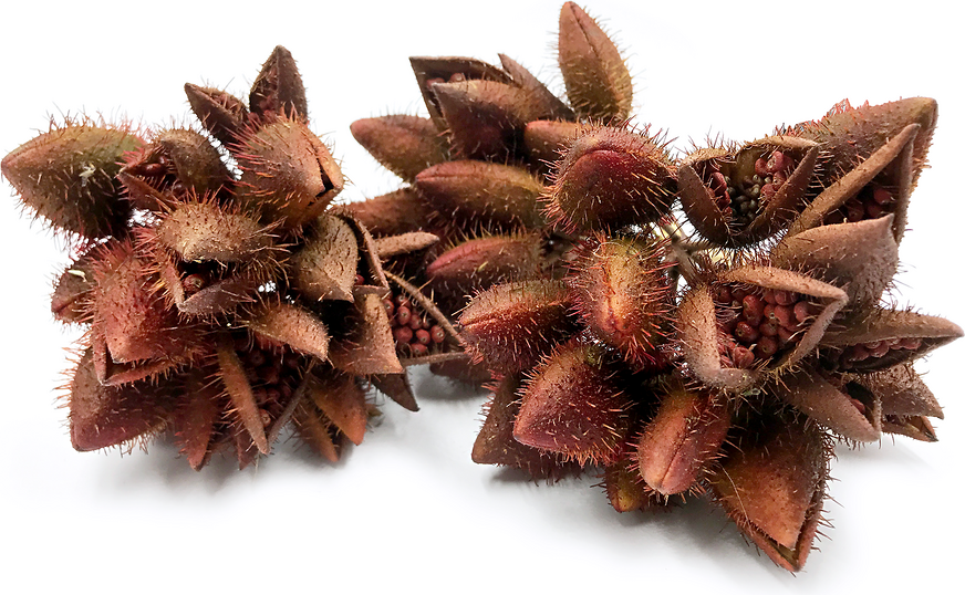 EFSA casts doubt on safety of some annatto food colours | 538x872