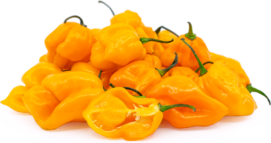 Yellow Scorpion Peppers picture
