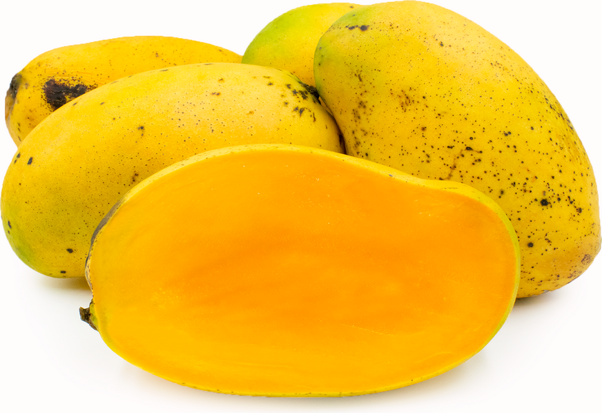 Francine Mangoes picture