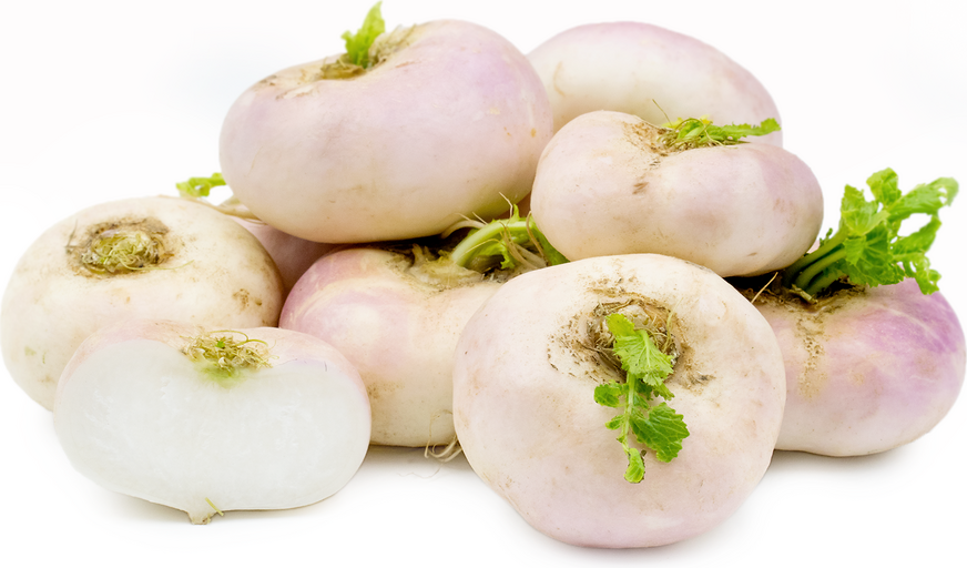 Flat Turnips picture
