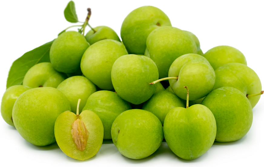 Armenian Green Plums picture