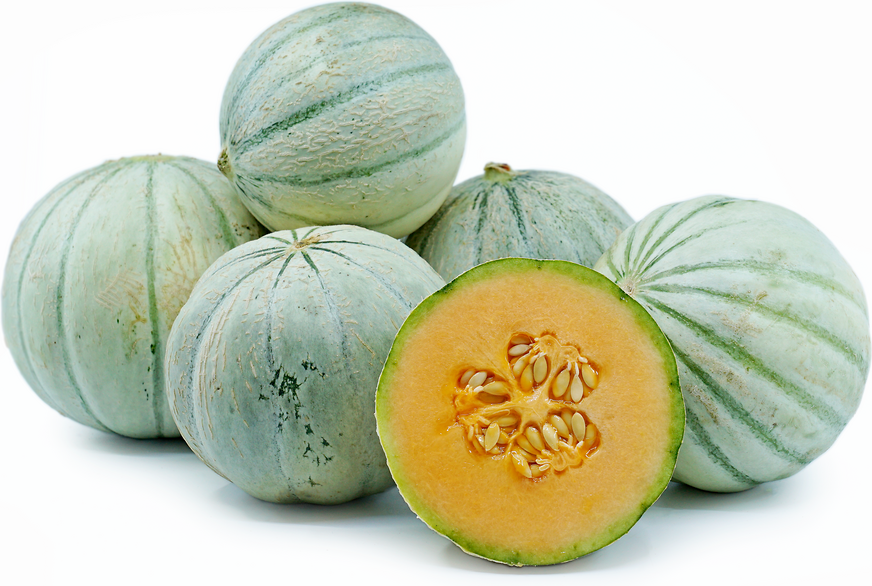 Savor Melon picture