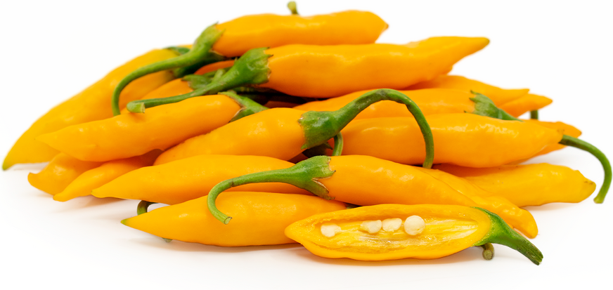 Criolla Sella Chile Peppers picture