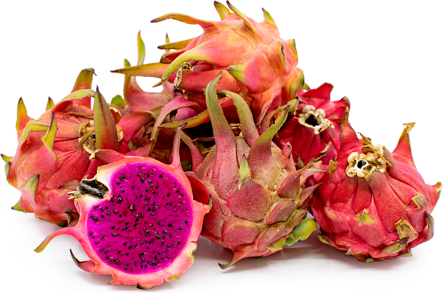 Robles Red Dragon Fruit picture