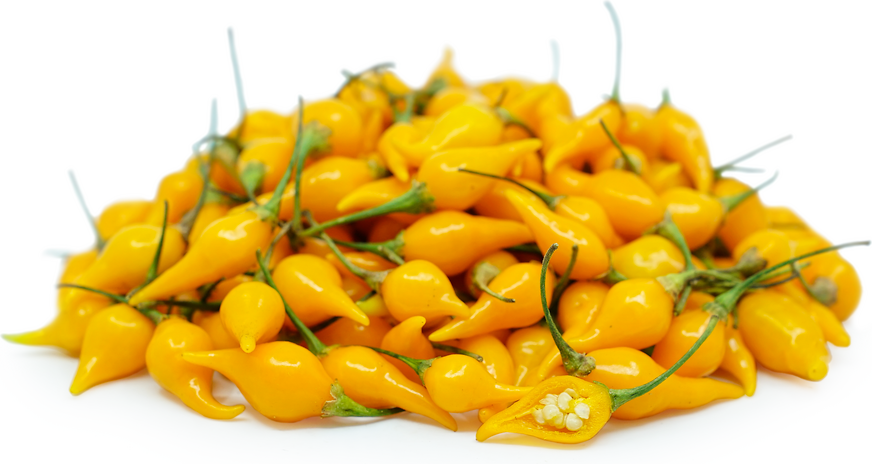Yellow Biquinho Chile Pepper picture