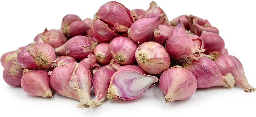 Red Shallots picture