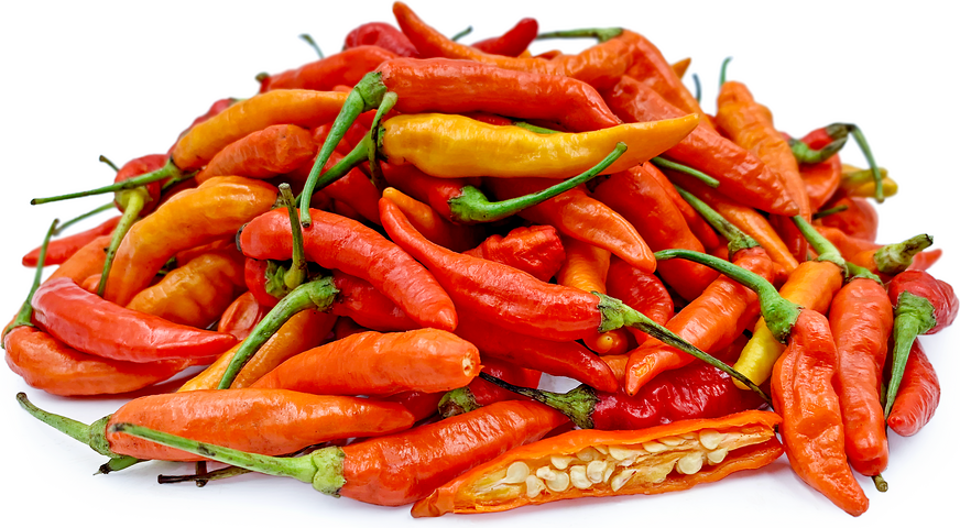 Red Thai Bird Chile Peppers picture
