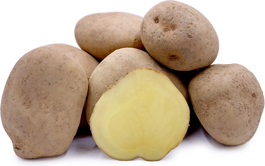 Yungay Potatoes picture