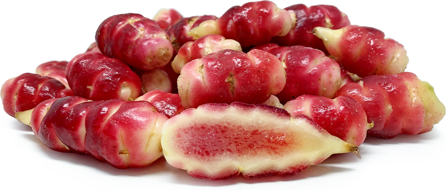 Oca Red Bolivian picture