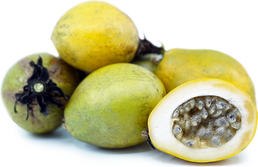 Rudy Passionfruit picture