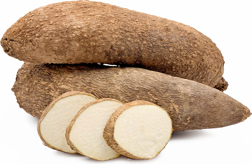 West African Yams Information and Facts