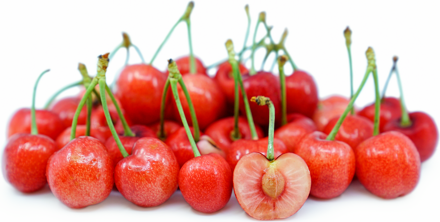 Royal Tioga Cherries picture