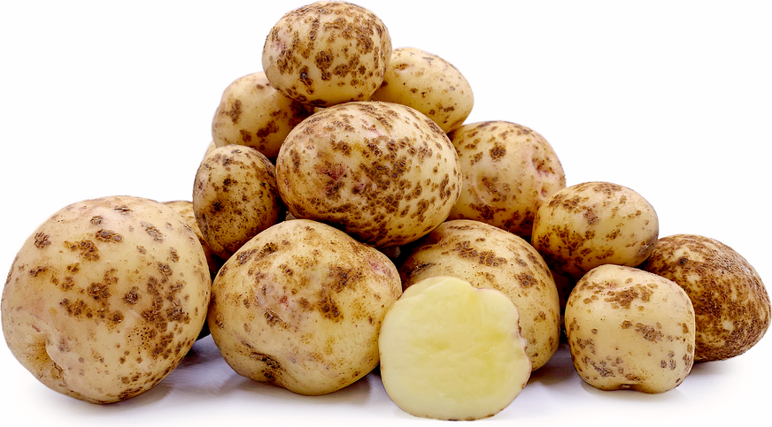 Kitaakari Potatoes picture
