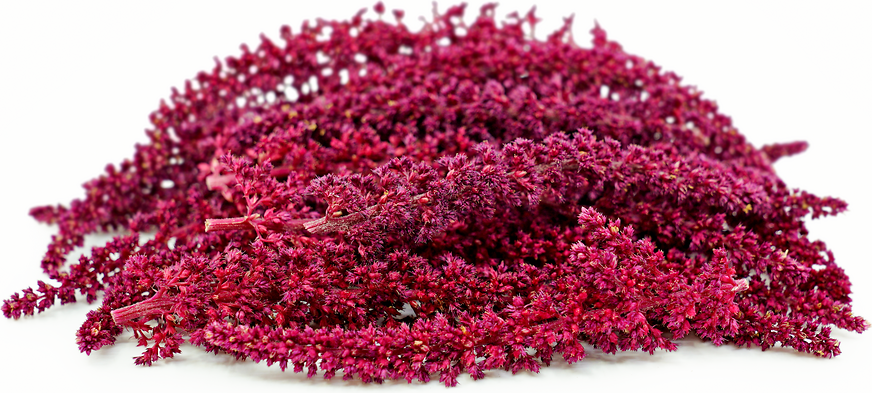 Burgundy Tassel Amaranth Flowers picture