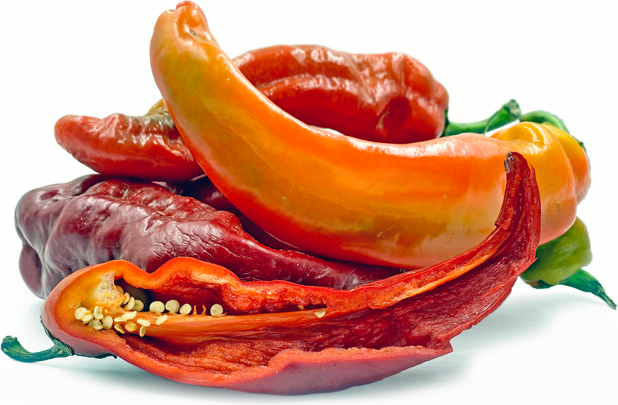 Red Thunder Chile Peppers picture