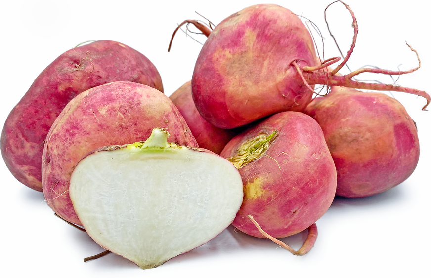 Red Sun Turnips picture